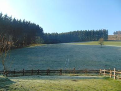 Pension Benner Alertshausen Schalsbach (8)